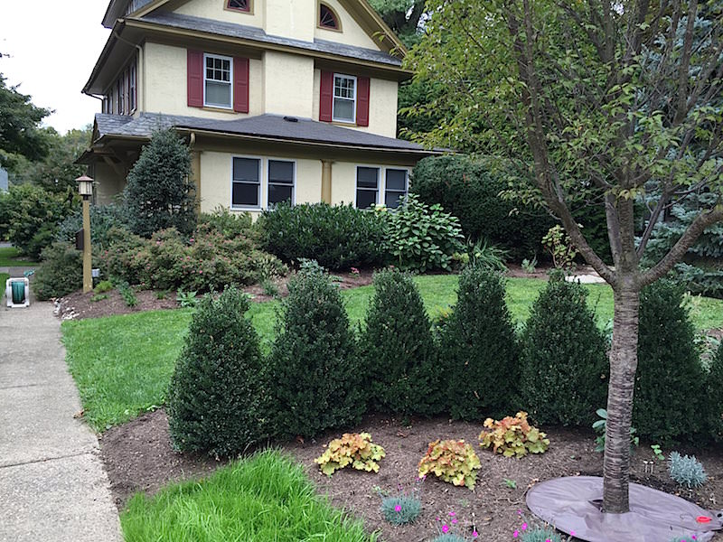 Landscape Curb Appeal - How It Increases the Value of Your Home 3