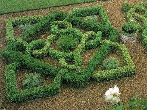 Herb Garden Basics 1